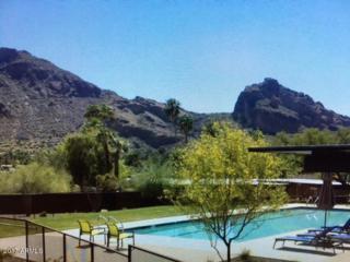 5434 E Lincoln Drive #39, Paradise Valley, AZ 85253 (MLS #5612043) :: Arizona Best Real Estate