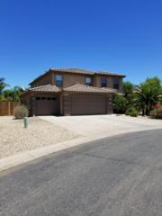 4390 E Rousay Drive, San Tan Valley, AZ 85140 (MLS #5612065) :: The Pete Dijkstra Team