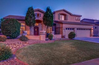 245 E Frances Lane, Gilbert, AZ 85295 (MLS #5612083) :: The Pete Dijkstra Team
