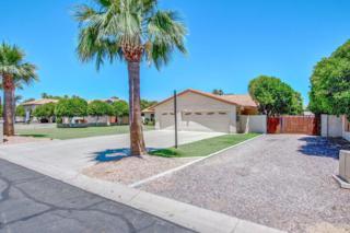 8352 W Via Montoya Drive, Peoria, AZ 85383 (MLS #5612088) :: Arizona Best Real Estate