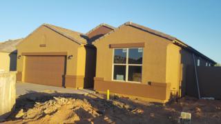 13625 W Desert Moon Way, Peoria, AZ 85383 (MLS #5612134) :: Arizona Best Real Estate