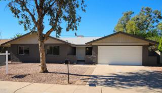 1200 E Campus Drive, Tempe, AZ 85282 (MLS #5612146) :: The Pete Dijkstra Team