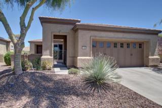 27365 N 128TH Lane, Peoria, AZ 85383 (MLS #5612147) :: Arizona Best Real Estate