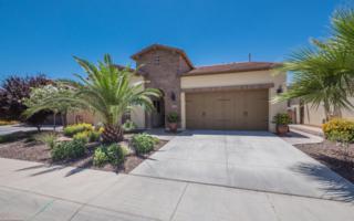 1753 E Sattoo Way, San Tan Valley, AZ 85140 (MLS #5612158) :: The Pete Dijkstra Team