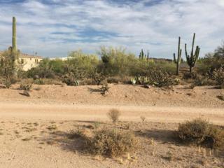 0 E Gloria Lane E, Cave Creek, AZ 85331 (MLS #5612181) :: Arizona Best Real Estate