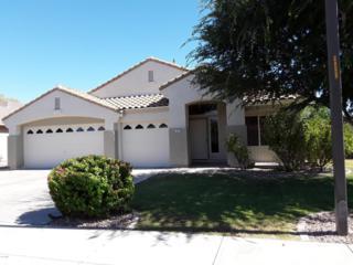 3905 E Wildhorse Drive, Gilbert, AZ 85297 (MLS #5612183) :: Arizona Best Real Estate