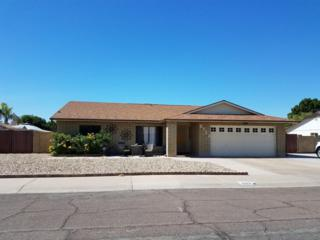 6123 W Surrey Avenue, Glendale, AZ 85304 (MLS #5612190) :: Arizona Best Real Estate