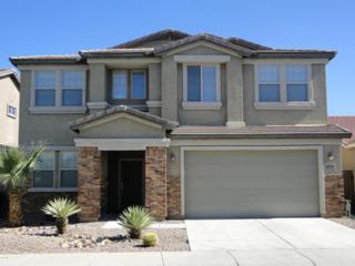 3774 E Longhorn Street, San Tan Valley, AZ 85140 (MLS #5612231) :: The Pete Dijkstra Team