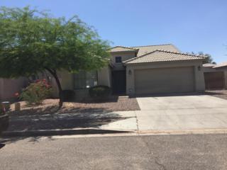 6620 S 18TH Drive, Phoenix, AZ 85041 (MLS #5612232) :: Arizona Best Real Estate
