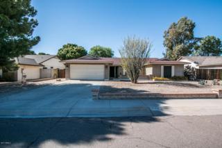 7332 W Dahlia Drive, Peoria, AZ 85381 (MLS #5612243) :: Arizona Best Real Estate