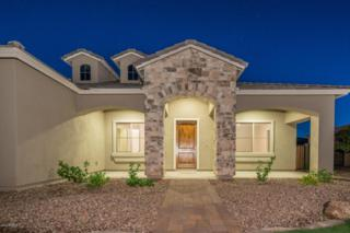 22073 E Munoz Court, Queen Creek, AZ 85142 (MLS #5612250) :: The Pete Dijkstra Team