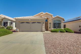 2260 E Ross Avenue, Phoenix, AZ 85024 (MLS #5612255) :: Arizona Best Real Estate