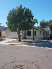 8834 W Charleston Avenue, Peoria, AZ 85382 (MLS #5612271) :: Arizona Best Real Estate