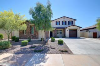 2871 E Iris Drive, Chandler, AZ 85286 (MLS #5579200) :: Sibbach Team - Realty One Group