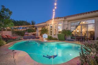 22016 N 36TH Street, Phoenix, AZ 85050 (MLS #5590336) :: Cambridge Properties