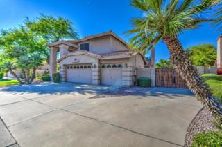 420 W Stacey Lane, Tempe, AZ 85284 (MLS #5610045) :: Group 46:10