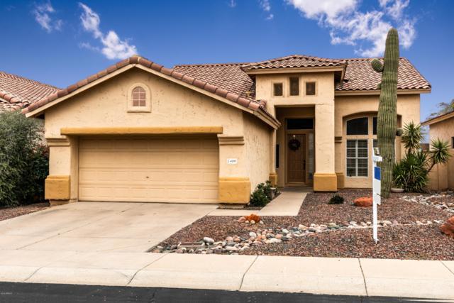 4310 E Desert Marigold Drive, Cave Creek, AZ 85331 (MLS #5771047) :: The Property Partners at eXp Realty
