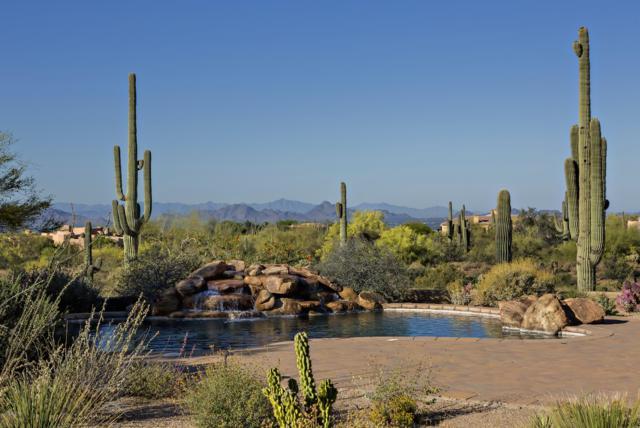 10024 E Calle De Las Brisas, Scottsdale, AZ 85255 (MLS #5587396) :: RE/MAX Excalibur