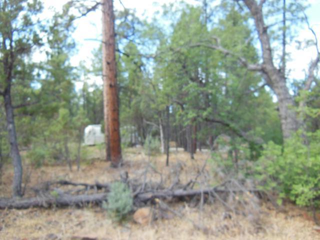 2715 N Bluegrass Ranch Road, Lakeside, AZ 85929 (MLS #5008253) :: Yost Realty Group at RE/MAX Casa Grande