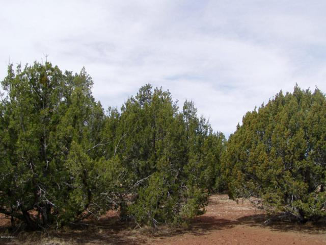 LOT 102 N Ranch Road, Show Low, AZ 85901 (MLS #5107788) :: Devor Real Estate Associates