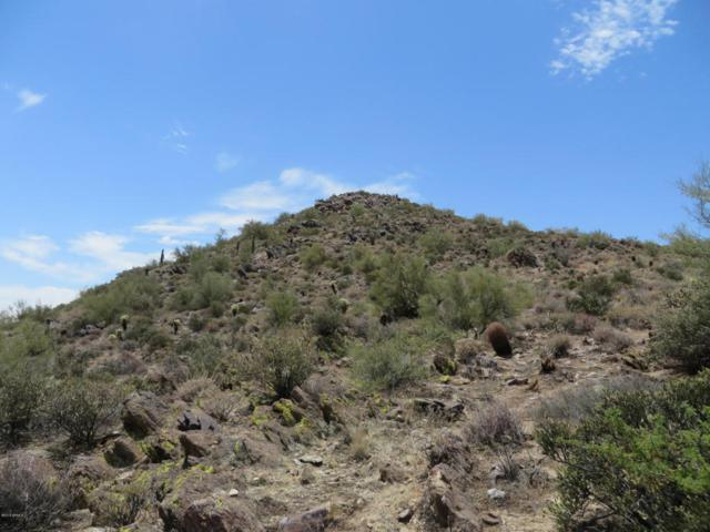 0000005 E Lone Mountain Road, Cave Creek, AZ 85331 (MLS #5140930) :: The Laughton Team