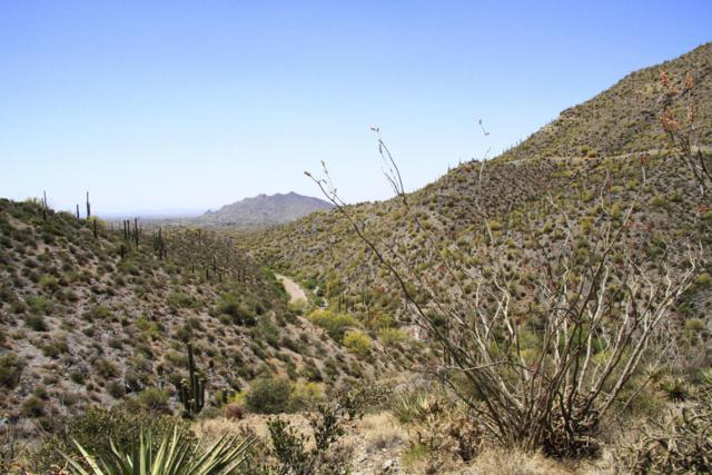 41859 N Brangus Road, Scottsdale, AZ 85262 (MLS #5150708) :: Conway Real Estate