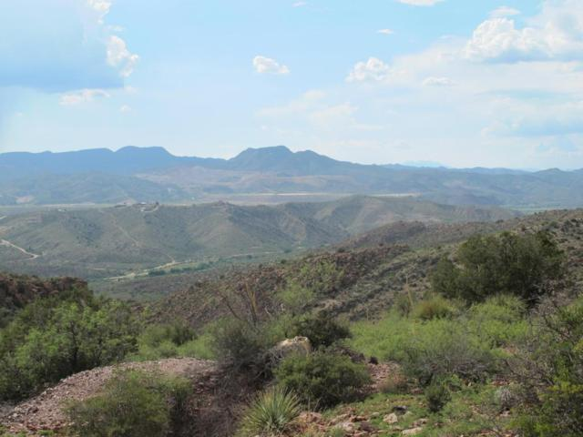 Lot 138 Twin Knolls Road, Globe, AZ 85502 (MLS #5160367) :: Long Realty West Valley