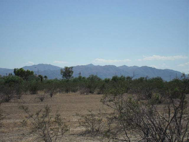 176XX W Dale Lane, Surprise, AZ 85387 (MLS #5216900) :: Phoenix Property Group
