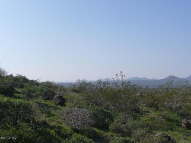 8962 W Roberta Lane, Peoria, AZ 85383 (MLS #5221487) :: The Garcia Group @ My Home Group