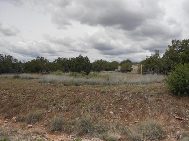 4650 W Dillon Wash Road, Prescott, AZ 86305 (MLS #5278697) :: The Garcia Group @ My Home Group