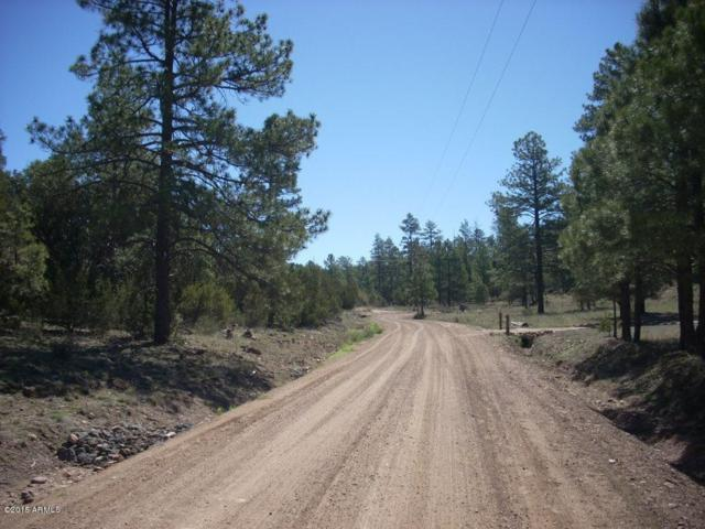 1904 Green Valley Road, Heber, AZ 85928 (MLS #5293175) :: The Garcia Group