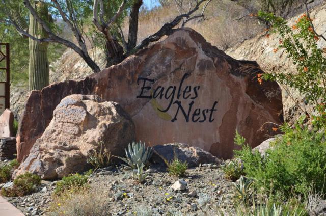 16007 N Diamondback Trail, Fountain Hills, AZ 85268 (MLS #5298763) :: Conway Real Estate