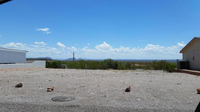 3923 N Lancaster Circle, Florence, AZ 85132 (MLS #5304947) :: Phoenix Property Group