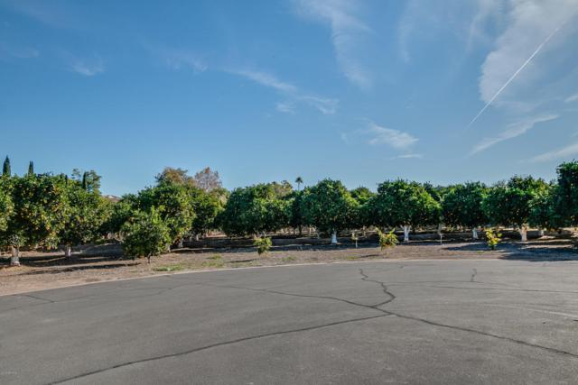 3829 E Huber Street, Mesa, AZ 85205 (MLS #5370551) :: Brett Tanner Home Selling Team