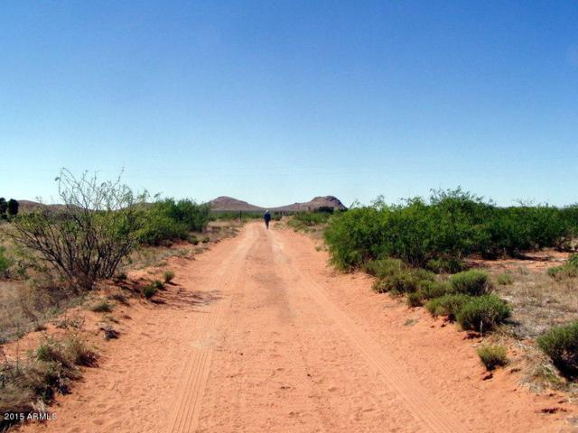 10ac. E Doe Ranch Road, Pearce, AZ 85625 (MLS #5375225) :: The Daniel Montez Real Estate Group
