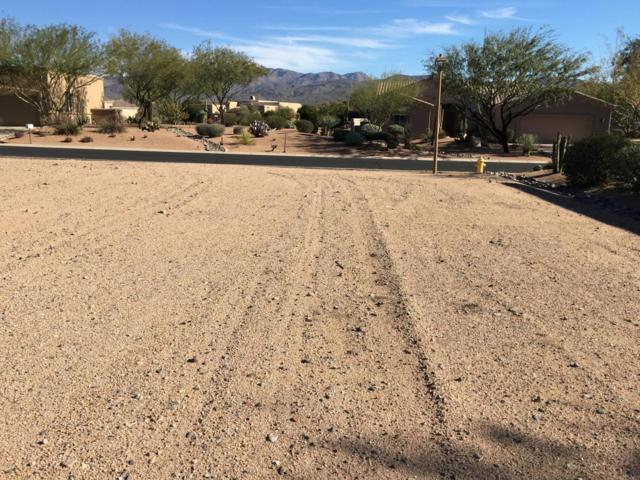 27928 N Walnut Creek Road, Rio Verde, AZ 85263 (MLS #5380336) :: Lucido Agency