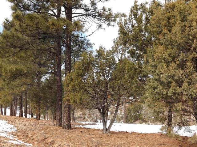 2296 Constellation Lane, Overgaard, AZ 85933 (MLS #5388486) :: Brett Tanner Home Selling Team