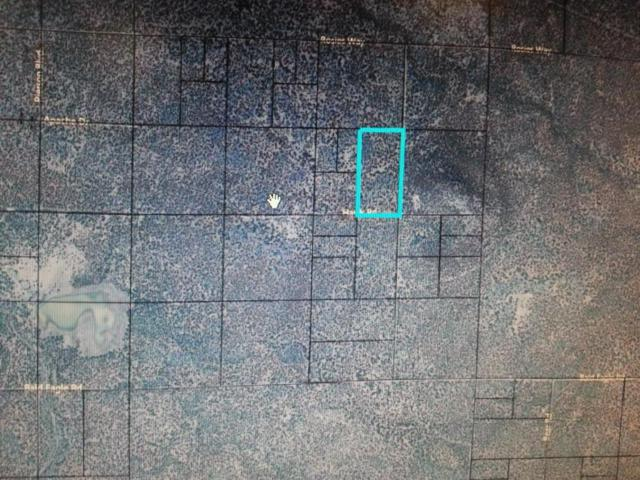 TBD Hawk Road, Snowflake, AZ 85937 (MLS #5392026) :: The Garcia Group @ My Home Group