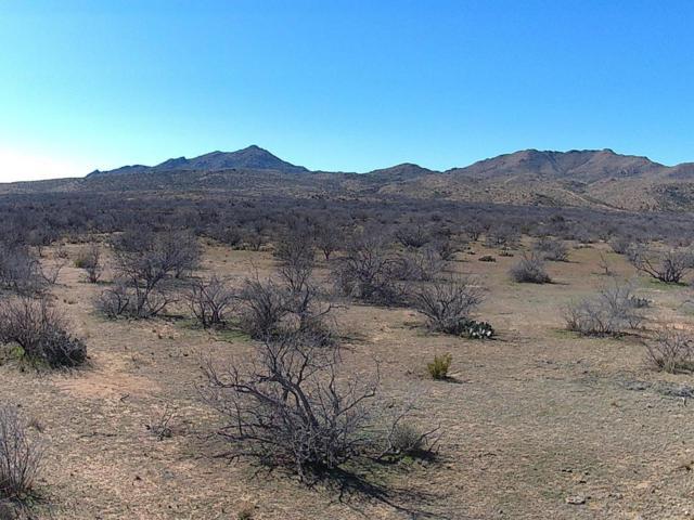 28658 W Travelers Way, Congress, AZ 85332 (MLS #5403690) :: Yost Realty Group at RE/MAX Casa Grande