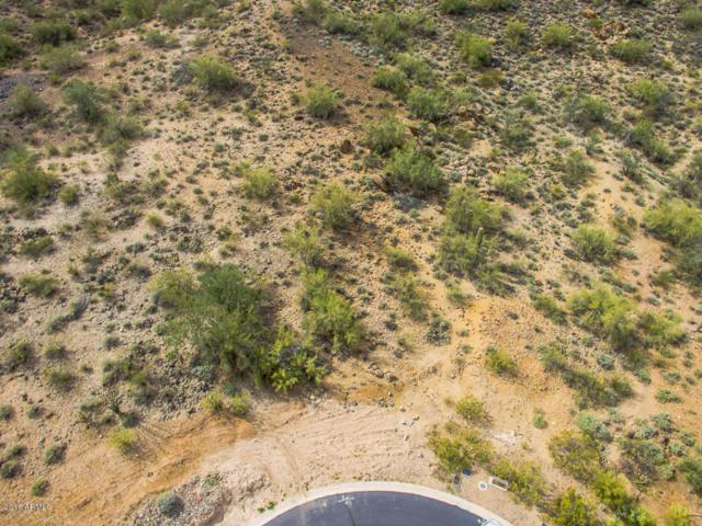 7185 W Roy Rogers Road, Peoria, AZ 85383 (MLS #5408392) :: The Results Group