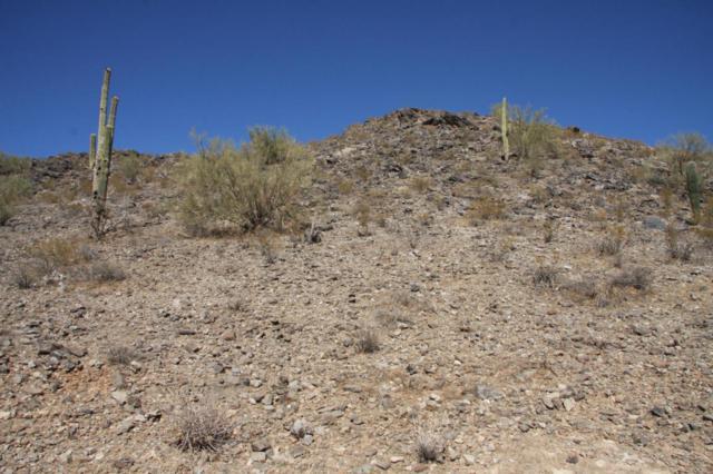 9183 S Lamb Road, Casa Grande, AZ 85193 (MLS #5444851) :: Yost Realty Group at RE/MAX Casa Grande