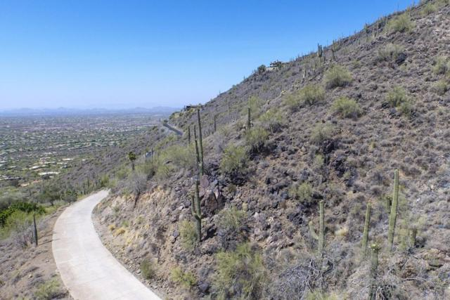 346XX N Secluded Lane, Carefree, AZ 85377 (MLS #5453470) :: Yost Realty Group at RE/MAX Casa Grande