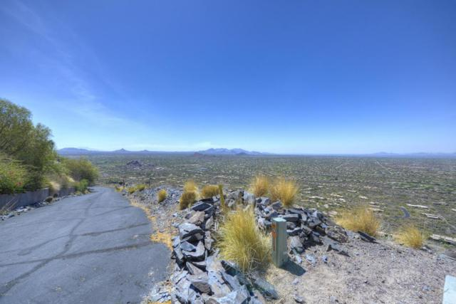 346XX N Secluded Lane, Carefree, AZ 85377 (MLS #5453494) :: Lucido Agency