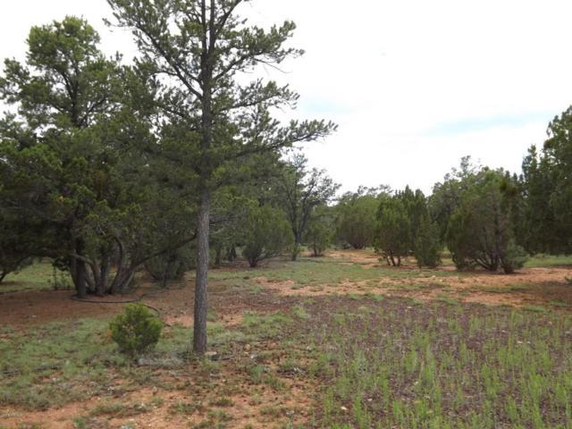2802 Chandelle Lane, Overgaard, AZ 85933 (MLS #5487259) :: Riddle Realty Group - Keller Williams Arizona Realty