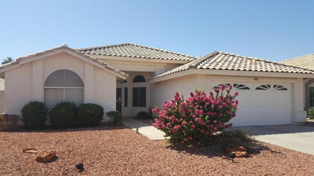 14661 W Fox Tail Drive, Surprise, AZ 85374 (MLS #5492951) :: Desert Home Premier