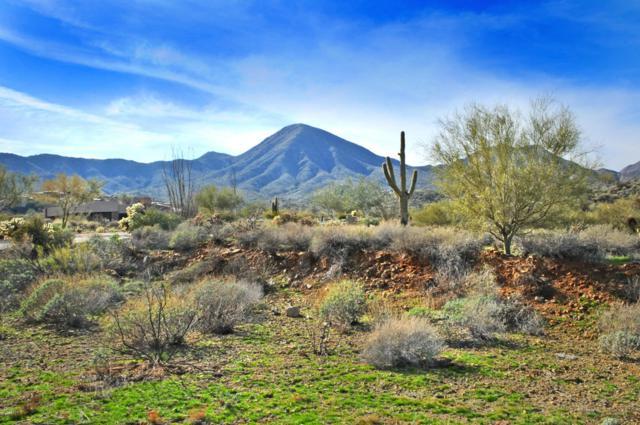 14340 E Desert Tortoise Trail, Fountain Hills, AZ 85268 (MLS #5497189) :: Yost Realty Group at RE/MAX Casa Grande