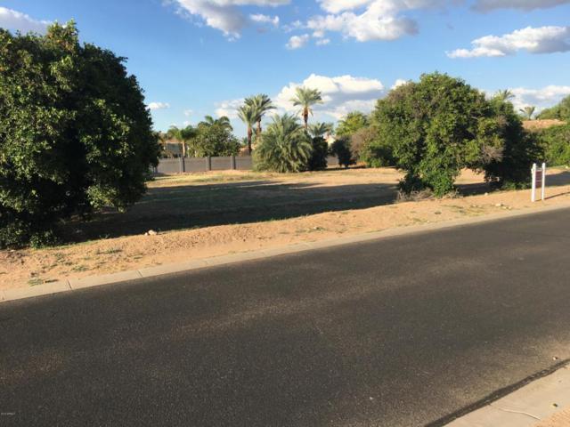 3530 E Kael Street, Mesa, AZ 85213 (MLS #5500564) :: Brett Tanner Home Selling Team