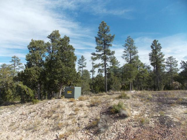 1863 Tenney Lane, Heber, AZ 85928 (MLS #5518582) :: Riddle Realty Group - Keller Williams Arizona Realty