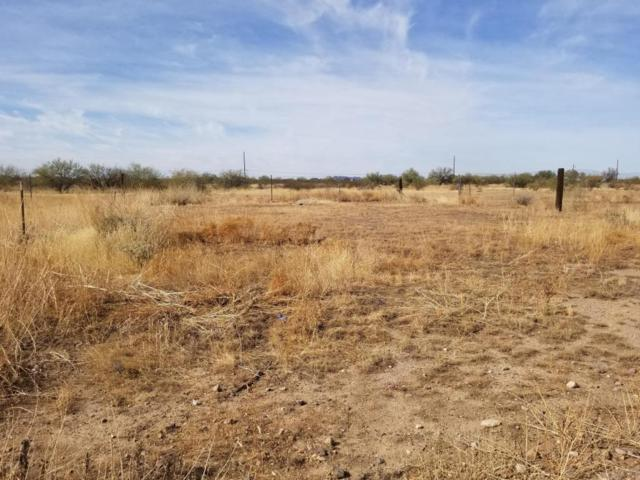 0 N Bush Street, Wittmann, AZ 85361 (MLS #5523099) :: Brett Tanner Home Selling Team