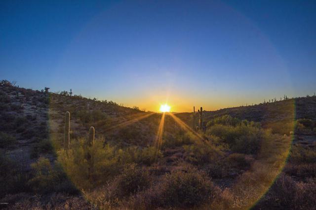 40204 N Brangus Road, Scottsdale, AZ 85262 (MLS #5523378) :: Brett Tanner Home Selling Team